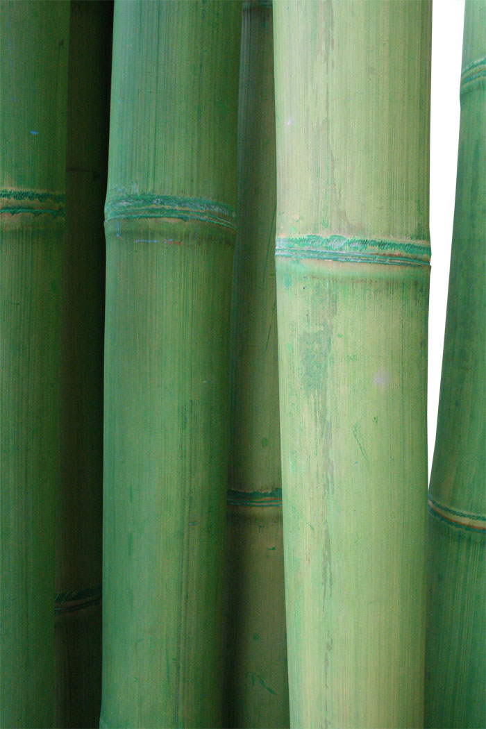 kmh raumteiler paravent sichtschutz bambus bambusm bel trennwand deko gr n ebay. Black Bedroom Furniture Sets. Home Design Ideas